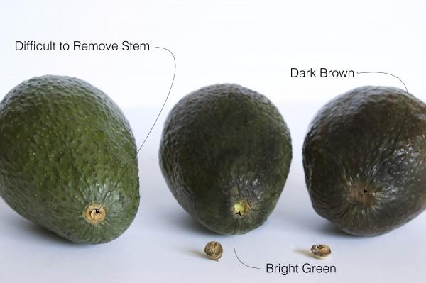 Wanneer is een avocado goed